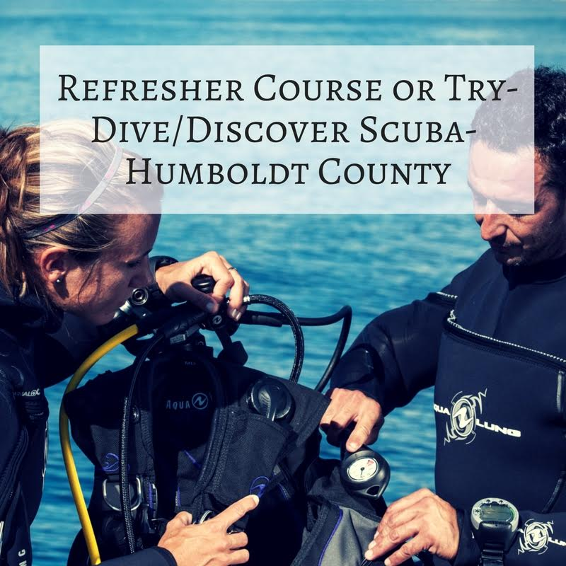 2 – Refresher SCUBA Course or Try Dive/Discover SCUBA
