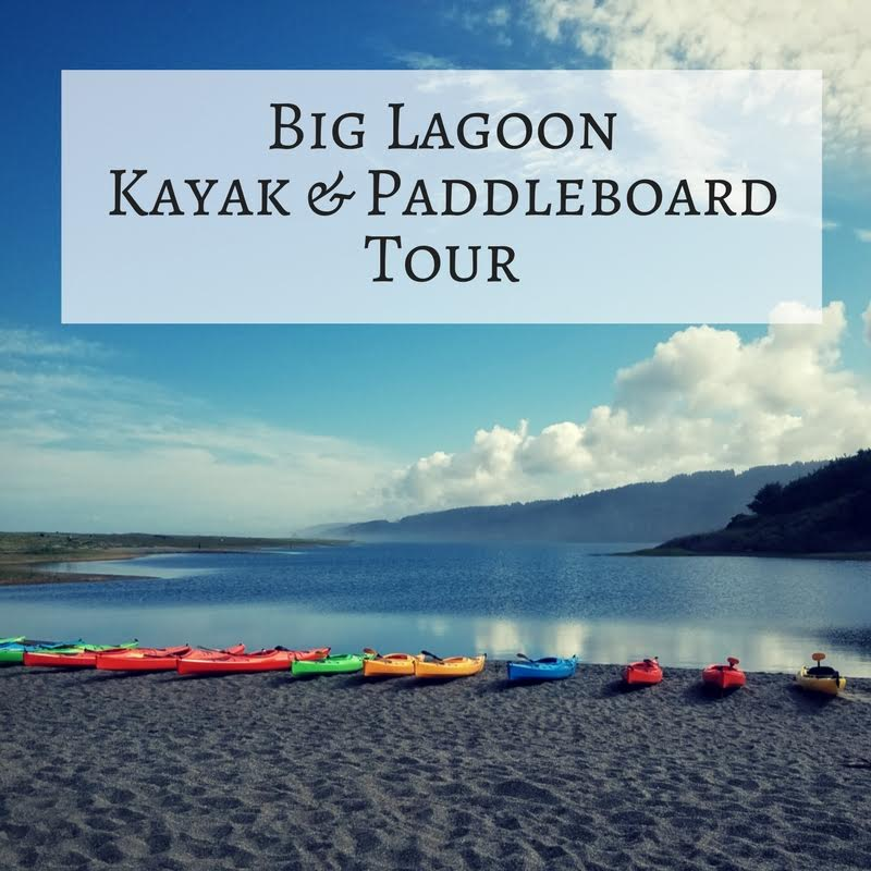 Tour: Big Lagoon – Kayak (4 Hours)