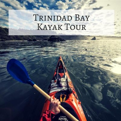 Tour: Trinidad Bay – Kayak (3 Hours)