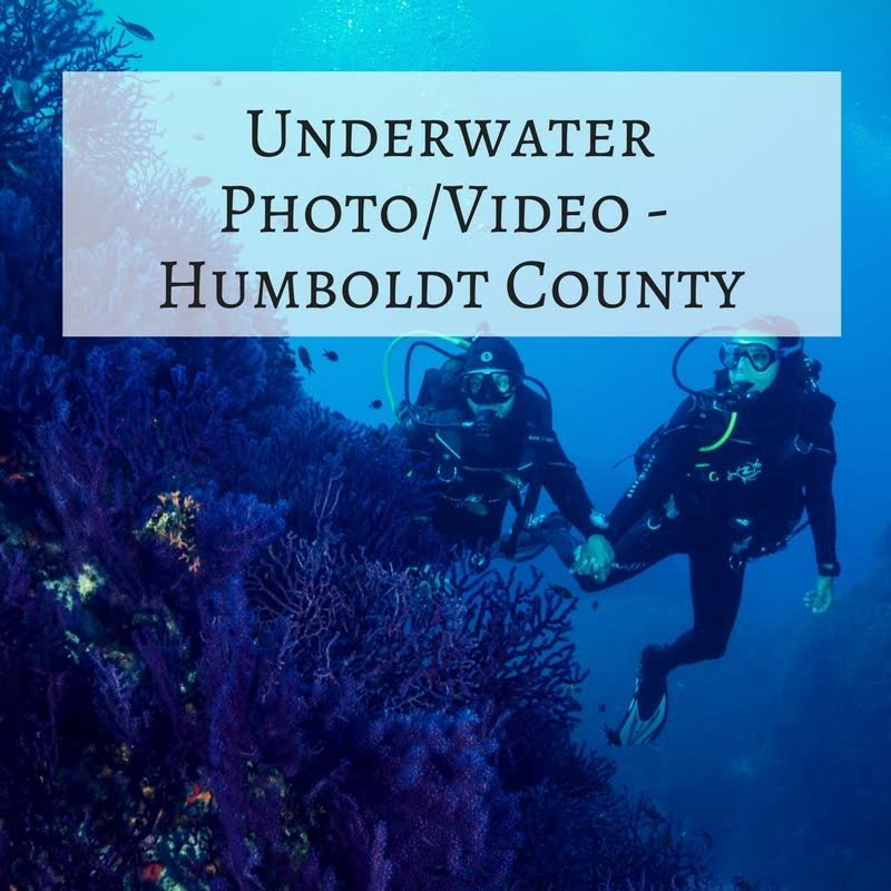 6 – Underwater Photo/Video – Humboldt County