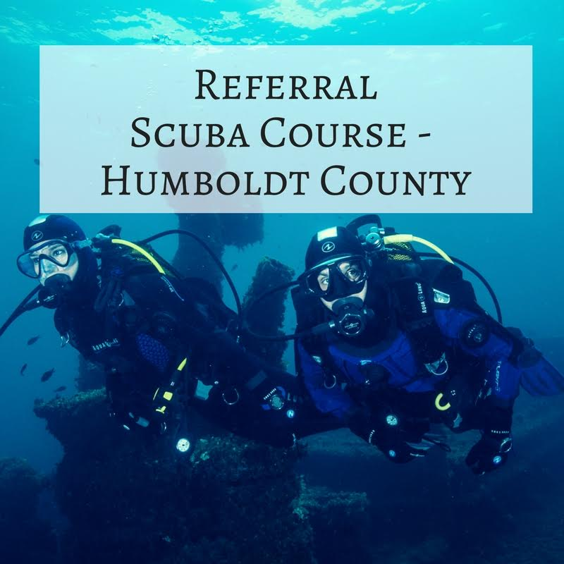3 – Referral Scuba Course – Humboldt County