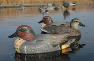 Greenwing Teal Image LS - Pacific Outfitters